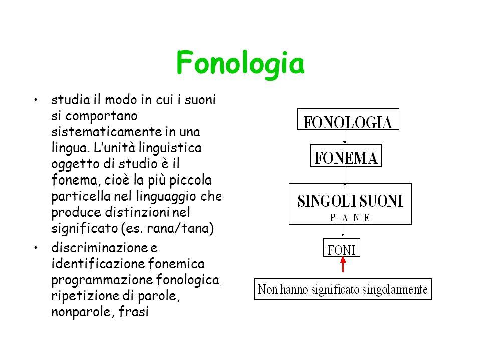 Fonologia studia il modo in cui i suoni si comportano sistematicamente in una lingua. Lunità linguistica oggetto di studio è il fonema, cioè la più pi