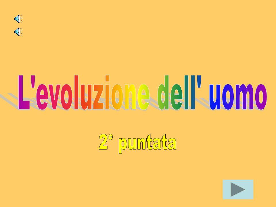 Documentario realizzato dalla classe 3°C della scuola Borgo Rodari