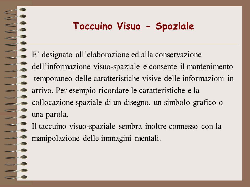 Taccuino Visuo - Spaziale E designato allelaborazione ed alla conservazione dellinformazione visuo-spaziale e consente il mantenimento temporaneo dell