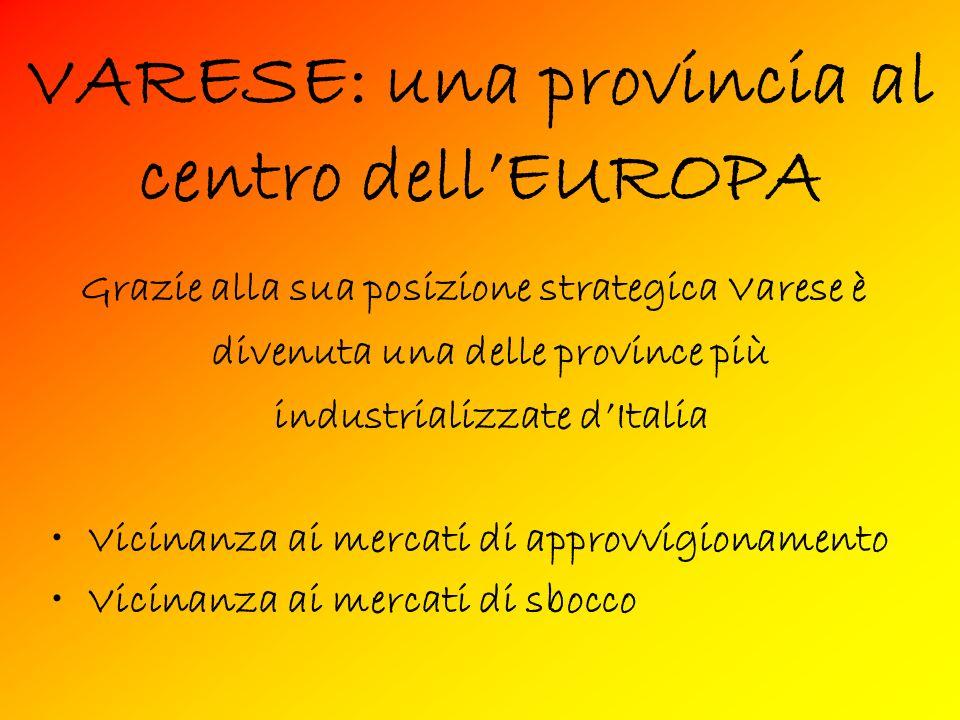 VARESE: una provincia al centro dellEUROPA Grazie alla sua posizione strategica Varese è divenuta una delle province più industrializzate dItalia Vicinanza ai mercati di approvvigionamento Vicinanza ai mercati di sbocco