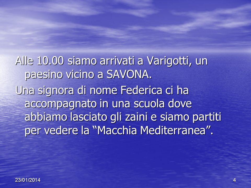 23/01/20144 Alle 10.00 siamo arrivati a Varigotti, un paesino vicino a SAVONA. Una signora di nome Federica ci ha accompagnato in una scuola dove abbi