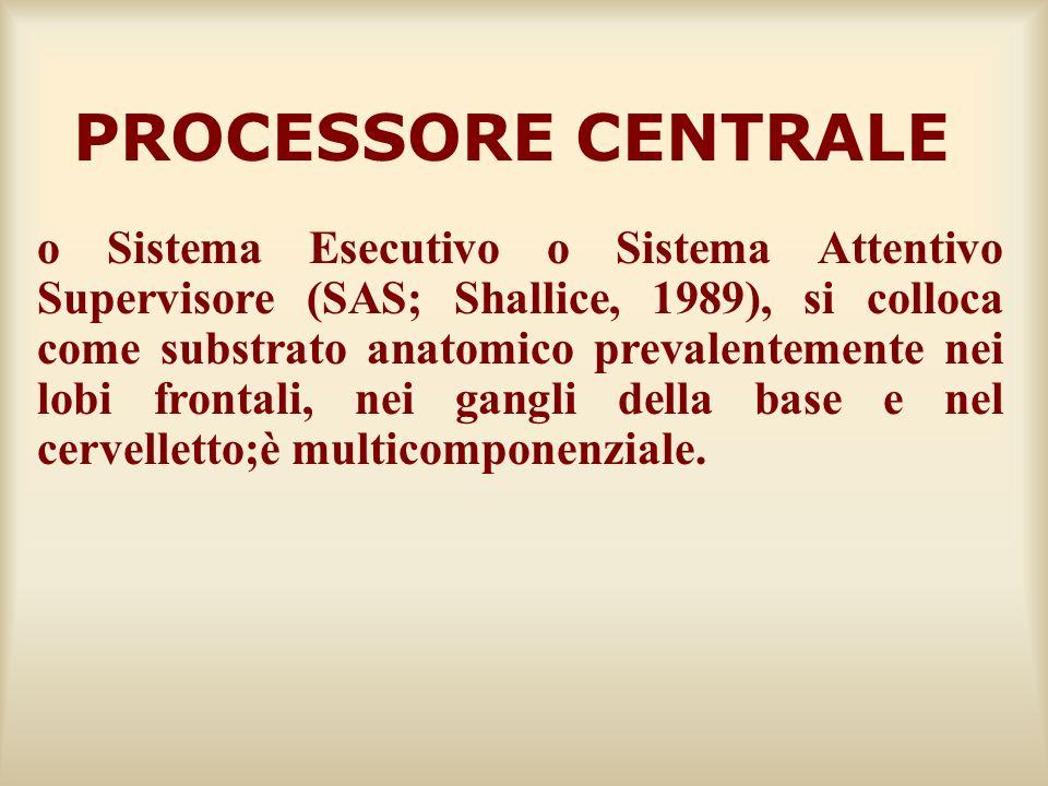 PROCESSORE CENTRALE o Sistema Esecutivo o Sistema Attentivo Supervisore (SAS; Shallice, 1989), si colloca come substrato anatomico prevalentemente nei