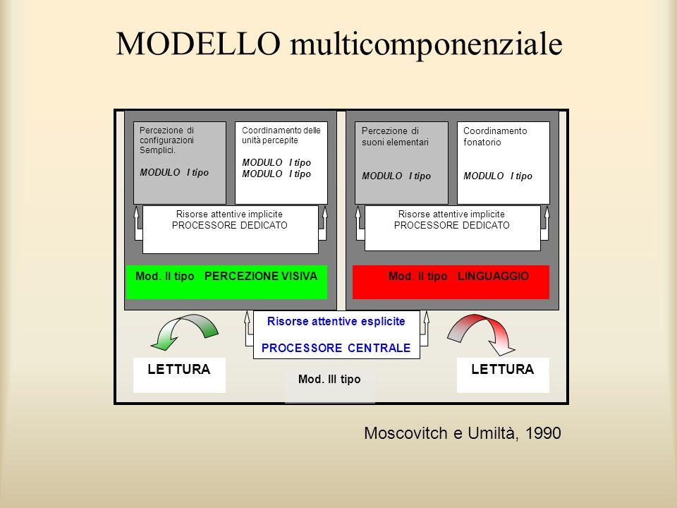 MODELLO multicomponenziale Percezione di configurazioni Semplici. MODULO I tipo Percezione di suoni elementari MODULO I tipo Coordinamento delle unità