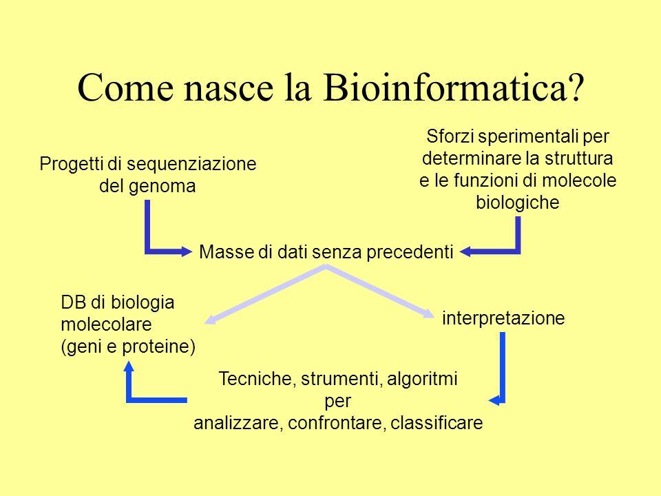 Come nasce la Bioinformatica? Progetti di sequenziazione del genoma Sforzi sperimentali per determinare la struttura e le funzioni di molecole biologi
