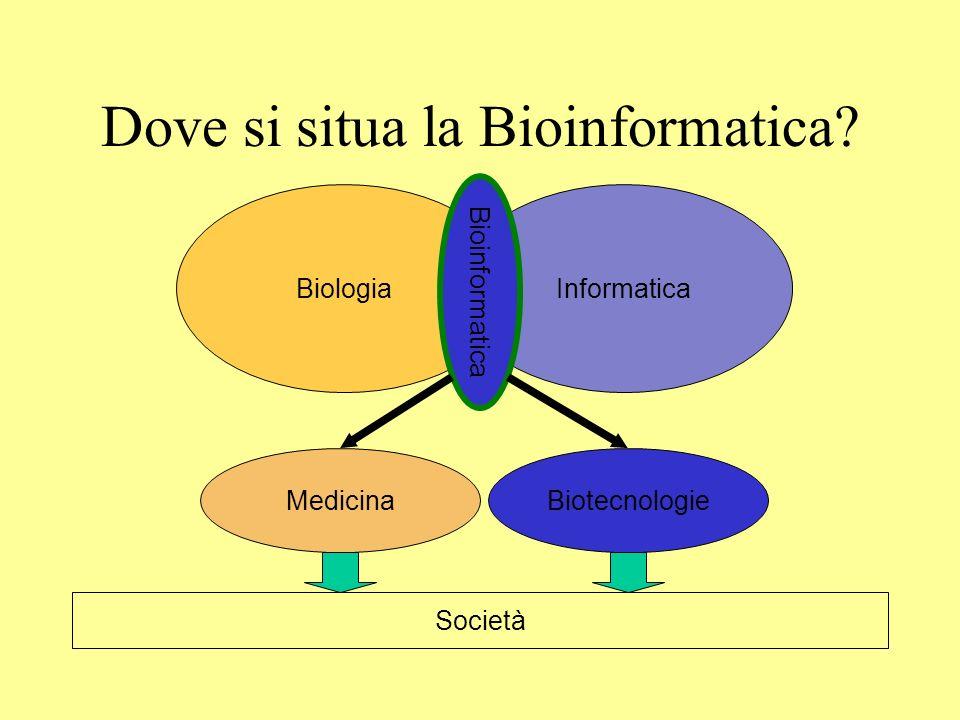 Dove si situa la Bioinformatica? BiologiaInformatica Bioinformatica MedicinaBiotecnologie Società