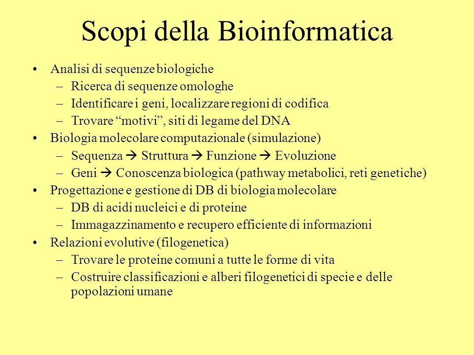 Scopi della Bioinformatica Analisi di sequenze biologiche –Ricerca di sequenze omologhe –Identificare i geni, localizzare regioni di codifica –Trovare motivi, siti di legame del DNA Biologia molecolare computazionale (simulazione) –Sequenza Struttura Funzione Evoluzione –Geni Conoscenza biologica (pathway metabolici, reti genetiche) Progettazione e gestione di DB di biologia molecolare –DB di acidi nucleici e di proteine –Immagazzinamento e recupero efficiente di informazioni Relazioni evolutive (filogenetica) –Trovare le proteine comuni a tutte le forme di vita –Costruire classificazioni e alberi filogenetici di specie e delle popolazioni umane