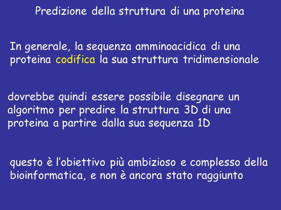 Predizione della struttura di una proteina In generale, la sequenza amminoacidica di una proteina codifica la sua struttura tridimensionale dovrebbe quindi essere possibile disegnare un algoritmo per predire la struttura 3D di una proteina a partire dalla sua sequenza 1D questo è lobiettivo più ambizioso e complesso della bioinformatica, e non è ancora stato raggiunto