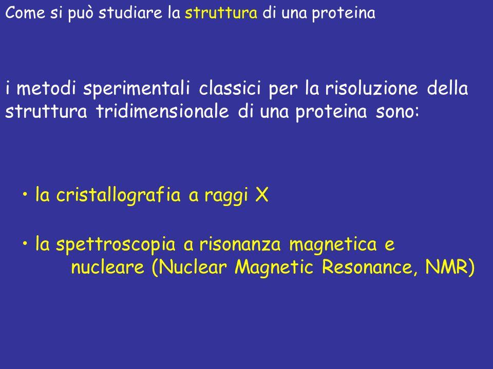 i metodi sperimentali classici per la risoluzione della struttura tridimensionale di una proteina sono: la cristallografia a raggi X la spettroscopia a risonanza magnetica e nucleare (Nuclear Magnetic Resonance, NMR) Come si può studiare la struttura di una proteina