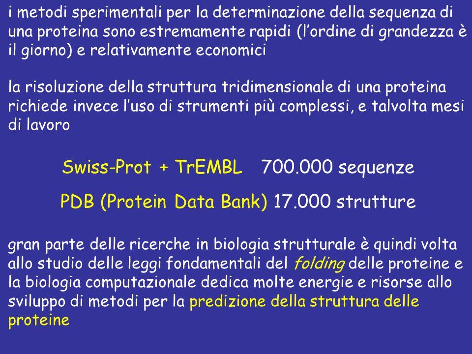 i metodi sperimentali per la determinazione della sequenza di una proteina sono estremamente rapidi (lordine di grandezza è il giorno) e relativamente