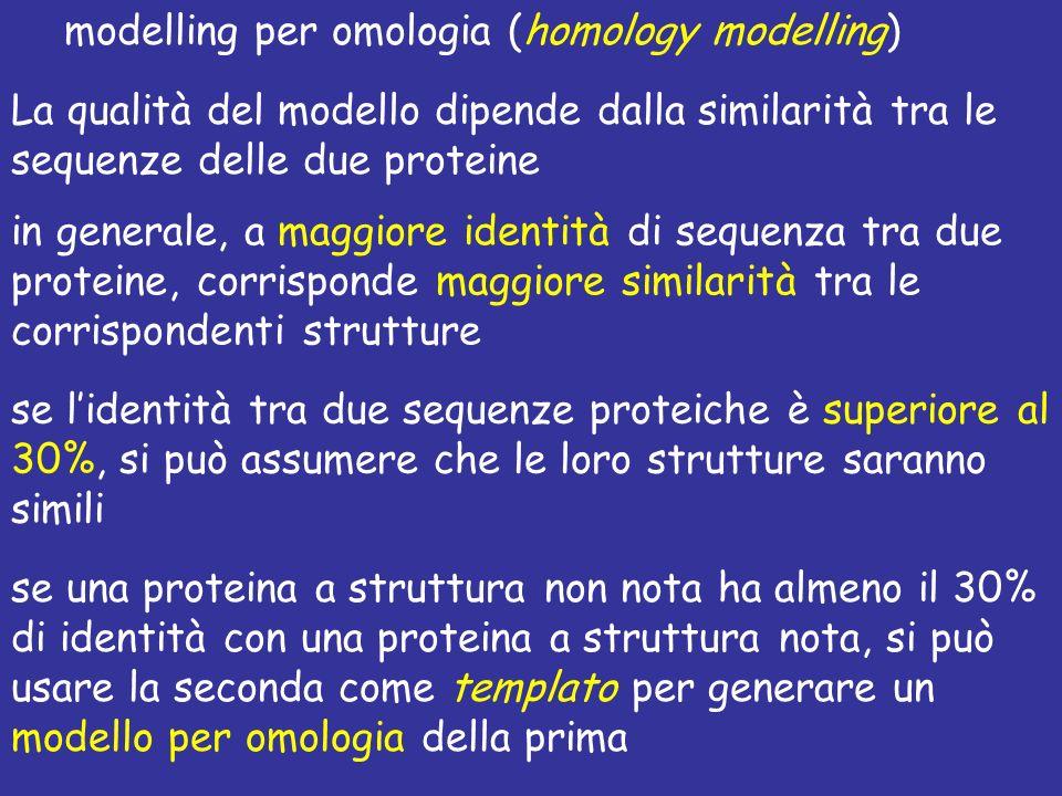 modelling per omologia (homology modelling) La qualità del modello dipende dalla similarità tra le sequenze delle due proteine in generale, a maggiore identità di sequenza tra due proteine, corrisponde maggiore similarità tra le corrispondenti strutture se lidentità tra due sequenze proteiche è superiore al 30%, si può assumere che le loro strutture saranno simili se una proteina a struttura non nota ha almeno il 30% di identità con una proteina a struttura nota, si può usare la seconda come templato per generare un modello per omologia della prima