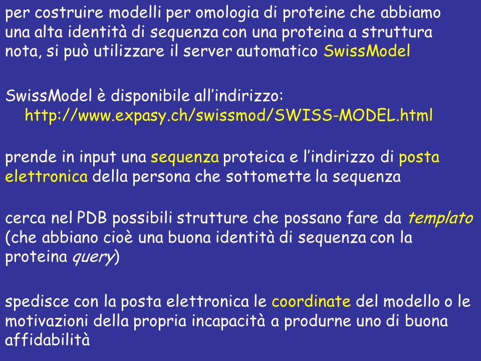 per costruire modelli per omologia di proteine che abbiamo una alta identità di sequenza con una proteina a struttura nota, si può utilizzare il server automatico SwissModel SwissModel è disponibile allindirizzo: http://www.expasy.ch/swissmod/SWISS-MODEL.html prende in input una sequenza proteica e lindirizzo di posta elettronica della persona che sottomette la sequenza cerca nel PDB possibili strutture che possano fare da templato (che abbiano cioè una buona identità di sequenza con la proteina query) spedisce con la posta elettronica le coordinate del modello o le motivazioni della propria incapacità a produrne uno di buona affidabilità