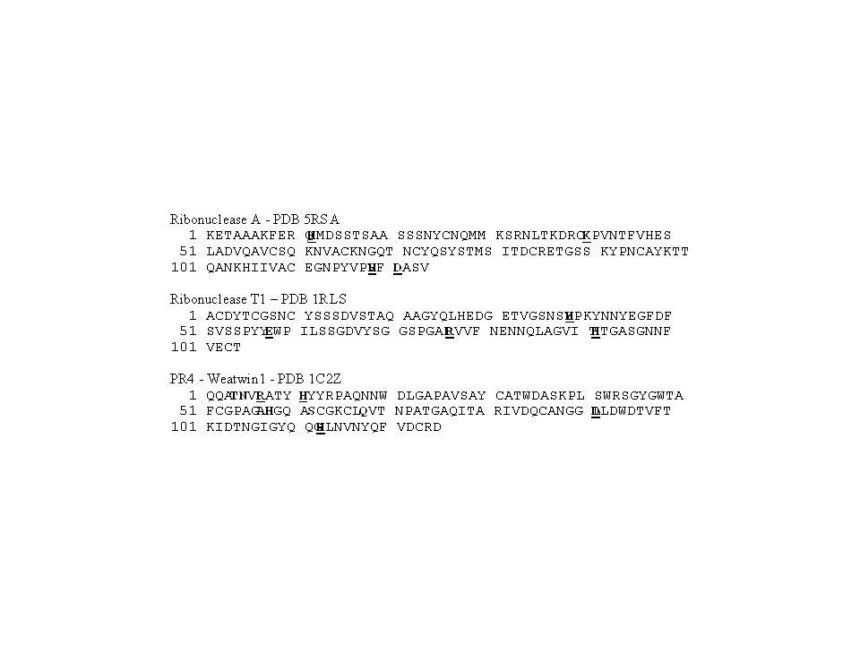 RNase A (A)RNase T1 (B) Wheatwin1 (C)
