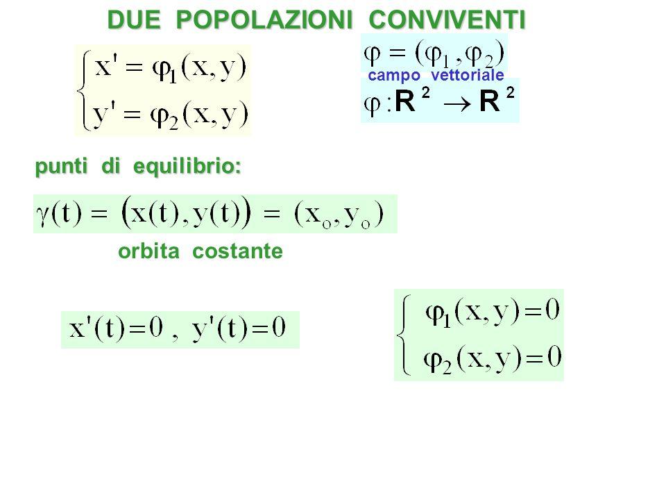 punti di equilibrio: orbita costante DUE POPOLAZIONI CONVIVENTI campo vettoriale
