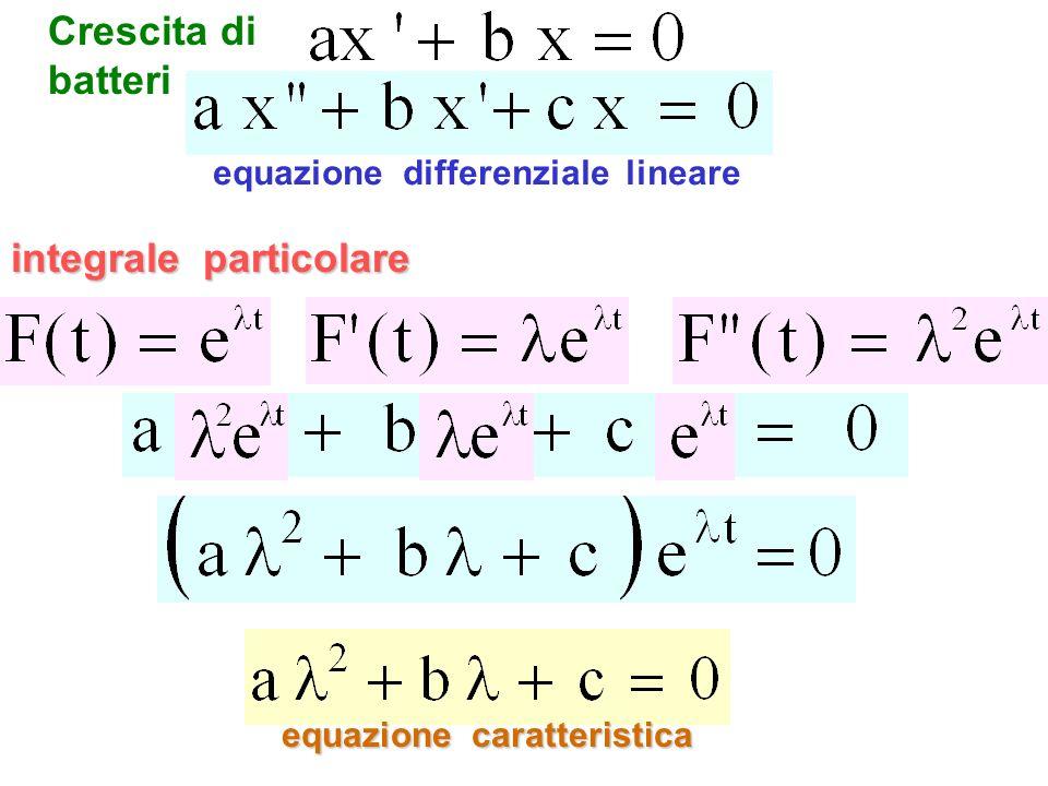 equazione differenziale lineare equazione caratteristica integrale particolare Crescita di batteri