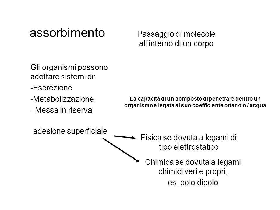 biomagnificazione Aumento della concentrazione di un composto, assorbito con la dieta, all interno degli organismi dal basso verso l alto della piramide alimentare.
