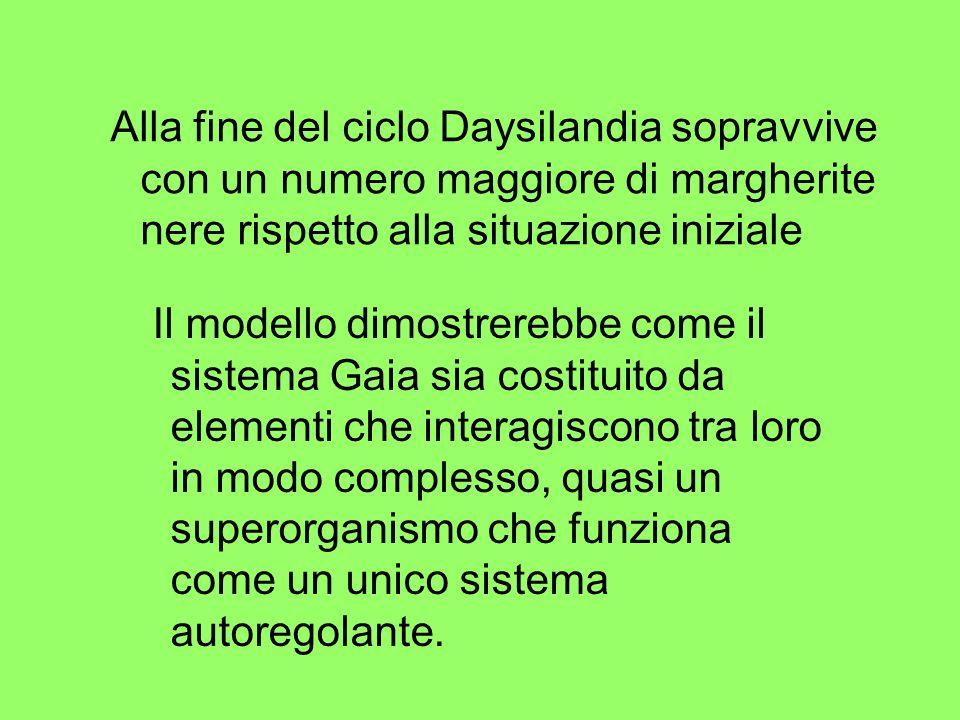 Alla fine del ciclo Daysilandia sopravvive con un numero maggiore di margherite nere rispetto alla situazione iniziale Il modello dimostrerebbe come i