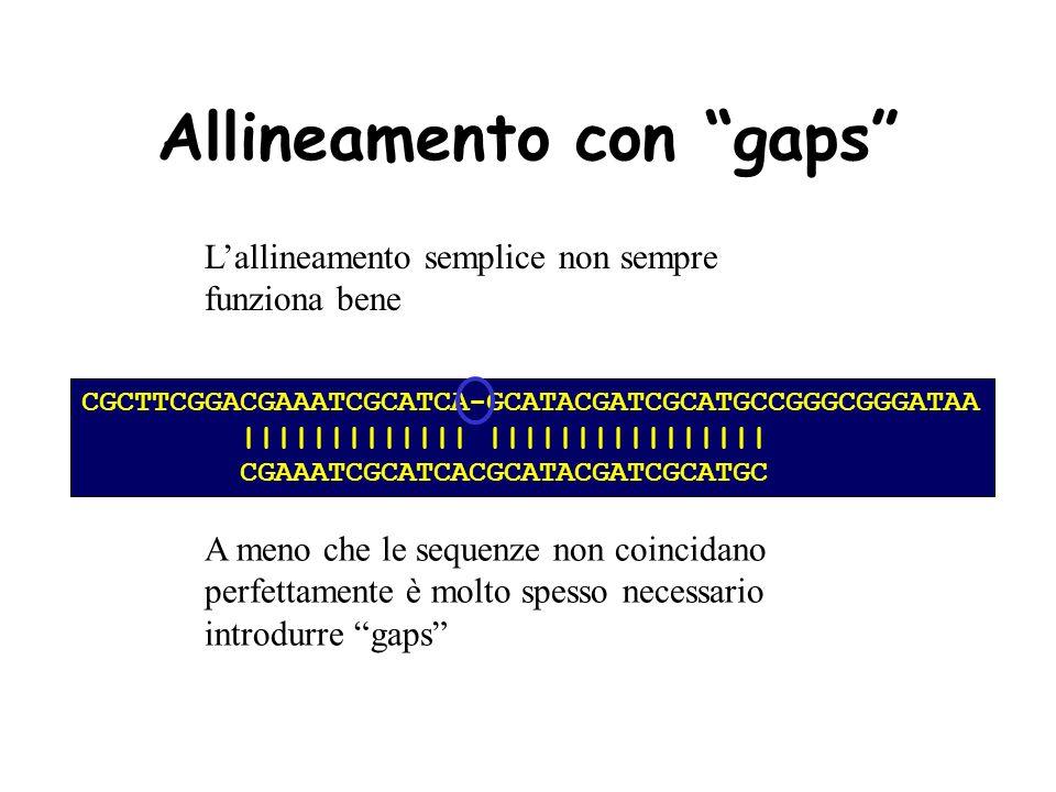 Allineamento con gaps Lallineamento semplice non sempre funziona bene CGCTTCGGACGAAATCGCATCAGCATACGATCGCATGCCGGGCGGGATAAC || | | | | | | | | CGAAATCGCATCACGCATACGATCGCATGC CGCTTCGGACGAAATCGCATCAGCATACGATCGCATGCCGGGCGGGATAAC | | | CGAAATCGCATCACGCATACGATCGCATGC CGCTTCGGACGAAATCGCATCAGCATACGATCGCATGCCGGGCGGGATAAC | | ||||| | | | CGAAATCGCATCACGCATACGATCGCATGC CGCTTCGGACGAAATCGCATCAGCATACGATCGCATGCCGGGCGGGATAAC || | | || || CGAAATCGCATCACGCATACGATCGCATGC CGCTTCGGACGAAATCGCATCAGCATACGATCGCATGCCGGGCGGGATAAC | ||| | | || || CGAAATCGCATCACGCATACGATCGCATGC CGCTTCGGACGAAATCGCATCAGCATACGATCGCATGCCGGGCGGGATAAC || | || | CGAAATCGCATCACGCATACGATCGCATGC CGCTTCGGACGAAATCGCATCAGCATACGATCGCATGCCGGGCGGGATAAC || || | | CGAAATCGCATCACGCATACGATCGCATGC CGCTTCGGACGAAATCGCATCAGCATACGATCGCATGCCGGGCGGGATAAC | | | CGAAATCGCATCACGCATACGATCGCATGC CGCTTCGGACGAAATCGCATCAGCATACGATCGCATGCCGGGCGGGATAAC || |||||||||||||||| CGAAATCGCATCACGCATACGATCGCATGC CGCTTCGGACGAAATCGCATCAGCATACGATCGCATGCCGGGCGGGATAAC ||||||||||||| | CGAAATCGCATCACGCATACGATCGCATGC A meno che le sequenze non coincidano perfettamente è molto spesso necessario introdurre gaps CGCTTCGGACGAAATCGCATCA-GCATACGATCGCATGCCGGGCGGGATAA ||||||||||||| |||||||||||||||| CGAAATCGCATCACGCATACGATCGCATGC