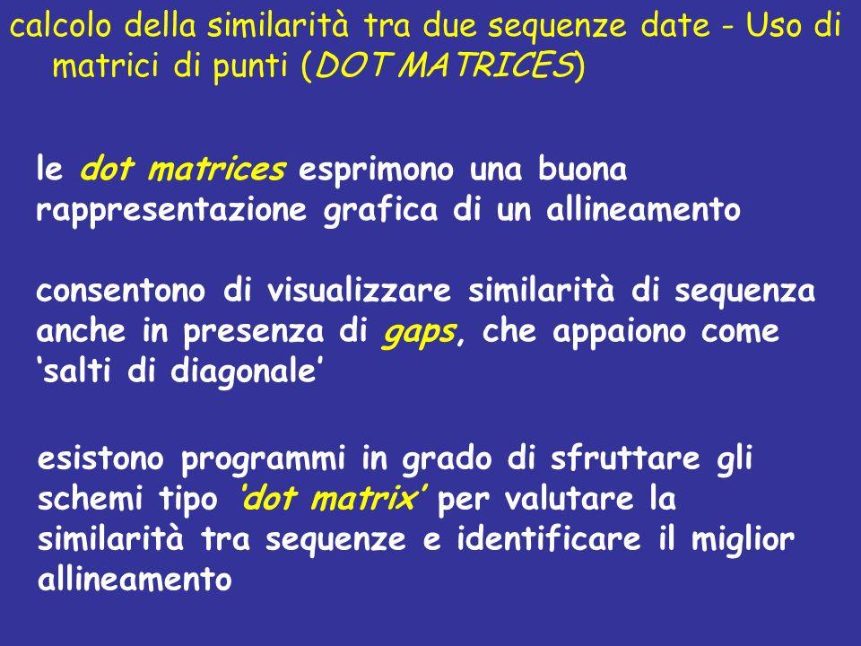 le dot matrices esprimono una buona rappresentazione grafica di un allineamento consentono di visualizzare similarità di sequenza anche in presenza di