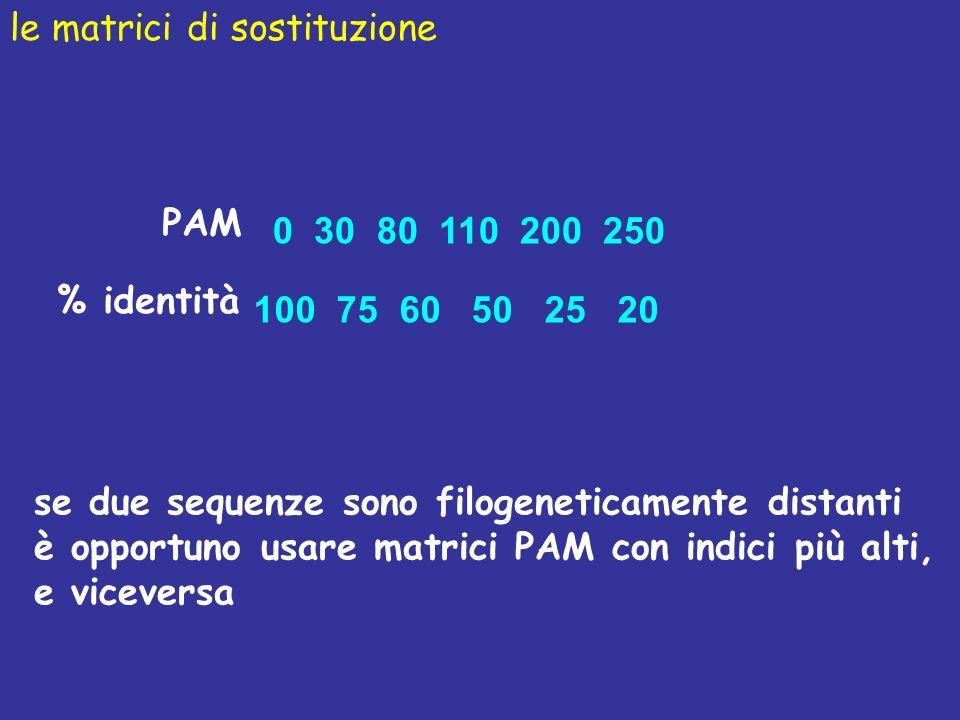 PAM 0 30 80 110 200 250 % identità 100 75 60 50 25 20 le matrici di sostituzione se due sequenze sono filogeneticamente distanti è opportuno usare matrici PAM con indici più alti, e viceversa