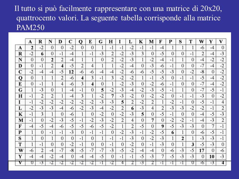 Il tutto si può facilmente rappresentare con una matrice di 20x20, quattrocento valori. La seguente tabella corrisponde alla matrice PAM250