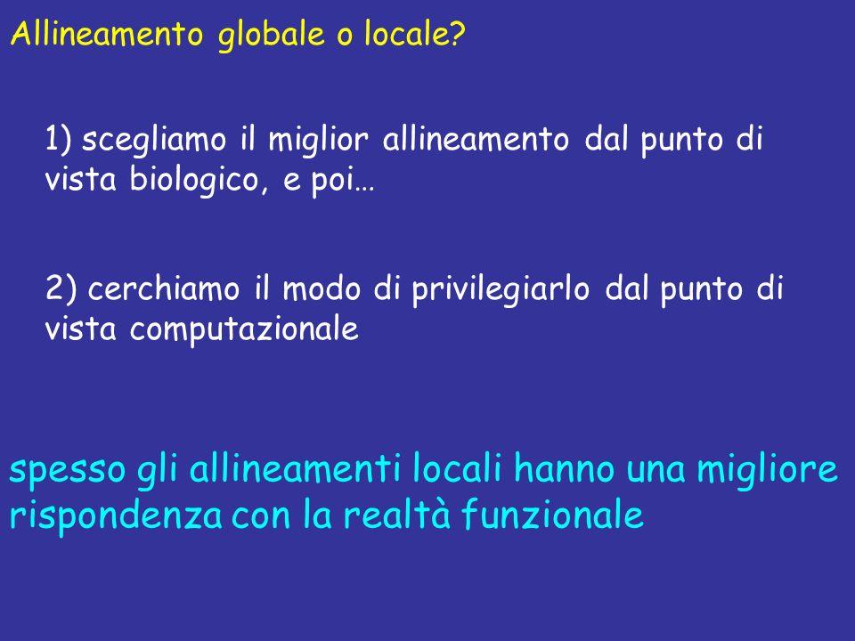 Allineamento globale o locale? 1) scegliamo il miglior allineamento dal punto di vista biologico, e poi… 2) cerchiamo il modo di privilegiarlo dal pun