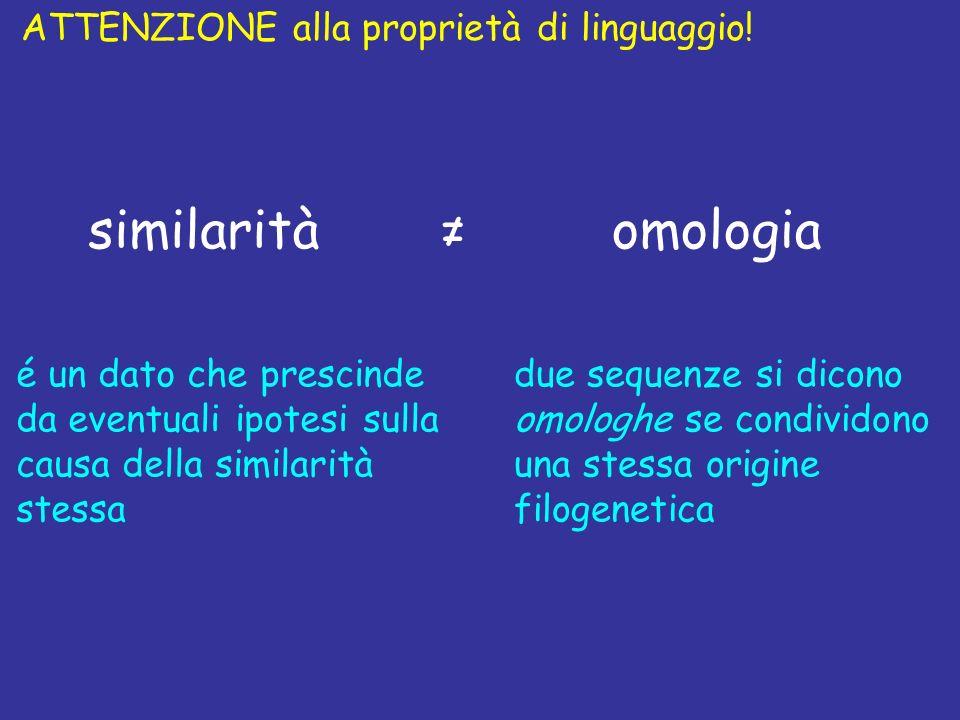 ATTENZIONE alla proprietà di linguaggio! due sequenze si dicono omologhe se condividono una stessa origine filogenetica é un dato che prescinde da eve
