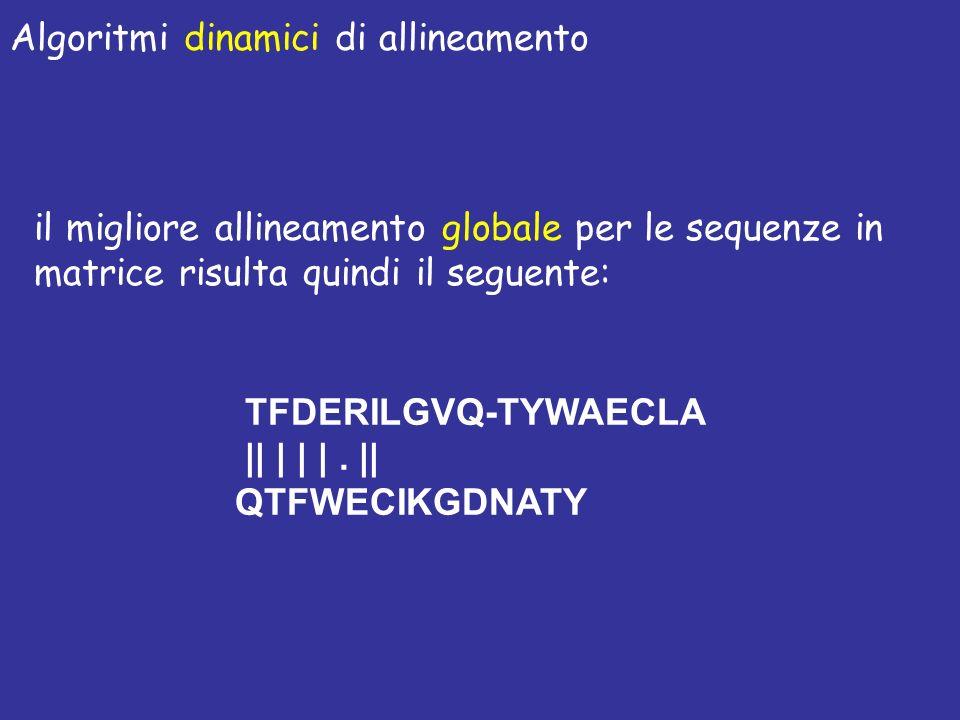 il migliore allineamento globale per le sequenze in matrice risulta quindi il seguente: TFDERILGVQ-TYWAECLA || | | |. || QTFWECIKGDNATY Algoritmi dina