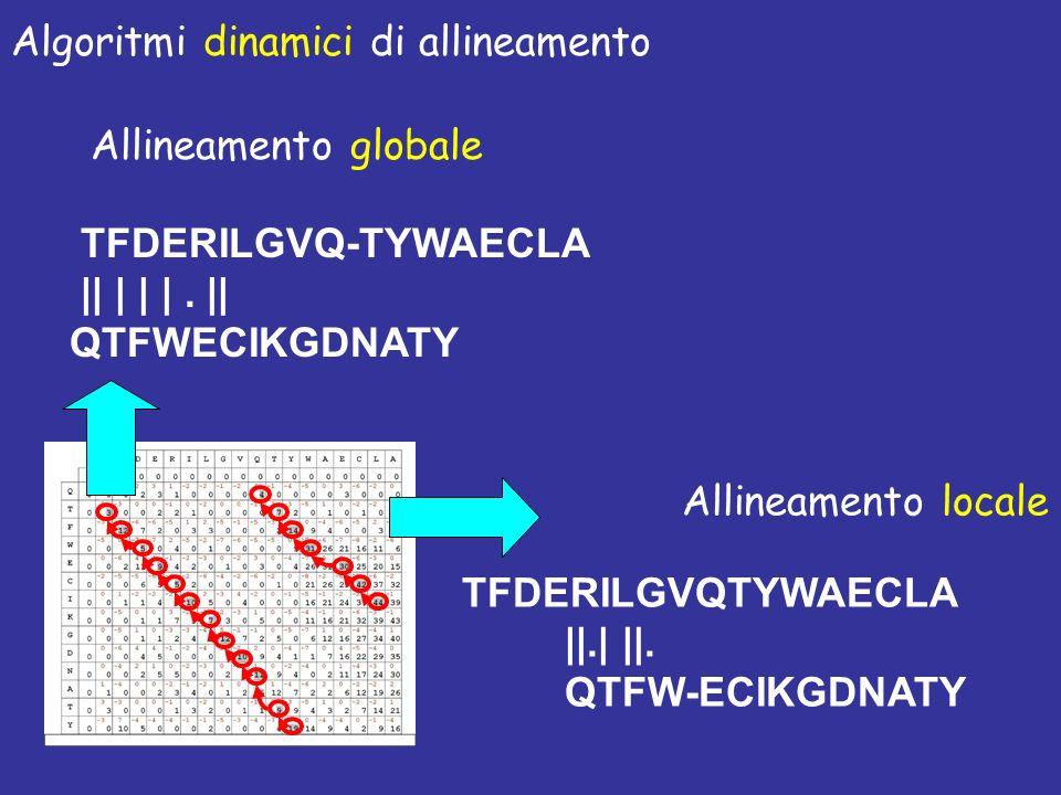 TFDERILGVQ-TYWAECLA || | | |. || QTFWECIKGDNATY Allineamento globale TFDERILGVQTYWAECLA ||.| ||. QTFW-ECIKGDNATY Allineamento locale