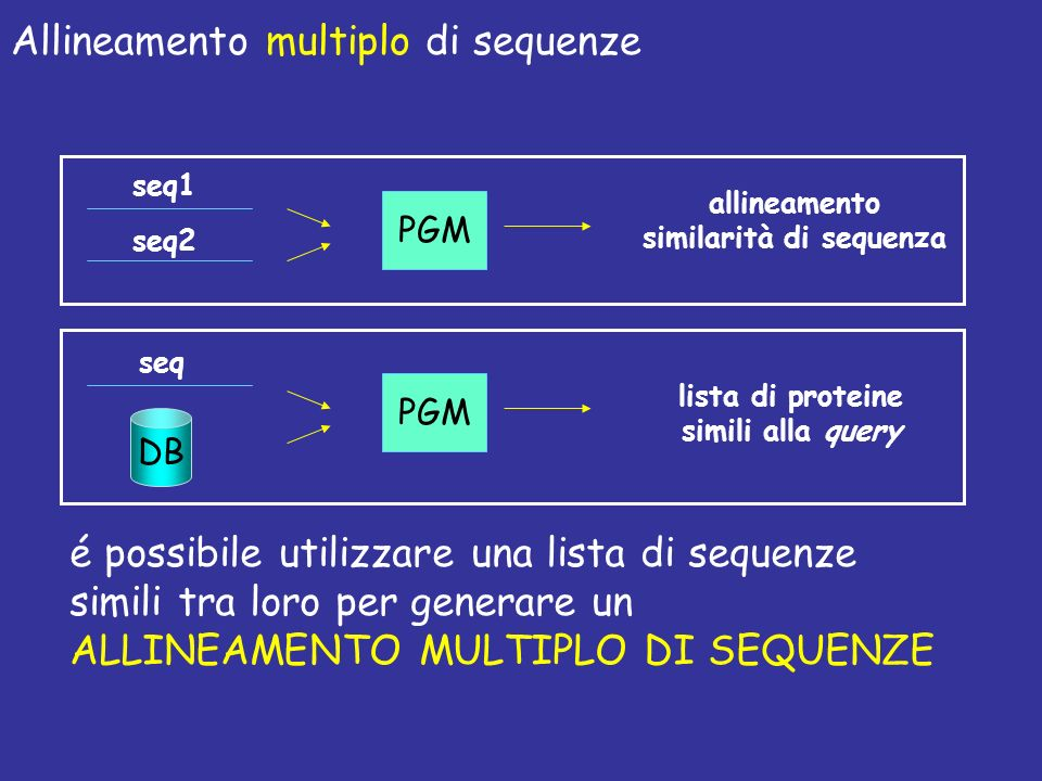Allineamento multiplo di sequenze PGM allineamento similarità di sequenza seq1 seq2 PGM lista di proteine simili alla query seq DB é possibile utilizzare una lista di sequenze simili tra loro per generare un ALLINEAMENTO MULTIPLO DI SEQUENZE