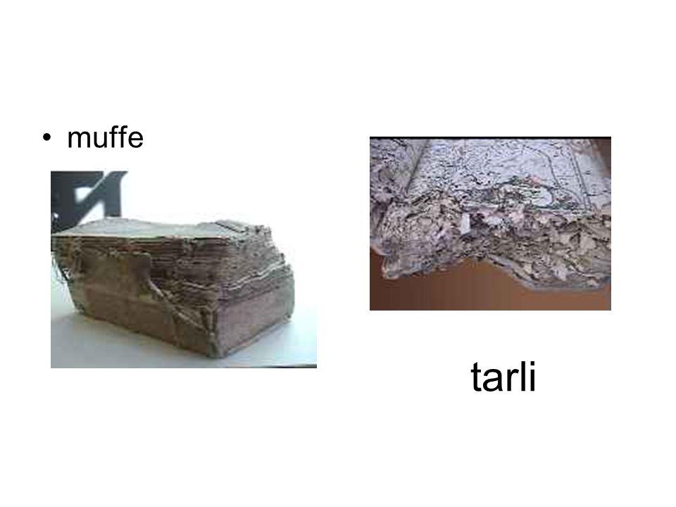tarli muffe