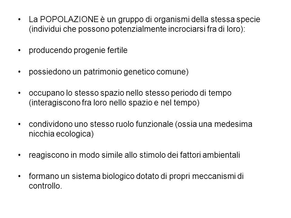 La POPOLAZIONE è un gruppo di organismi della stessa specie (individui che possono potenzialmente incrociarsi fra di loro): producendo progenie fertil