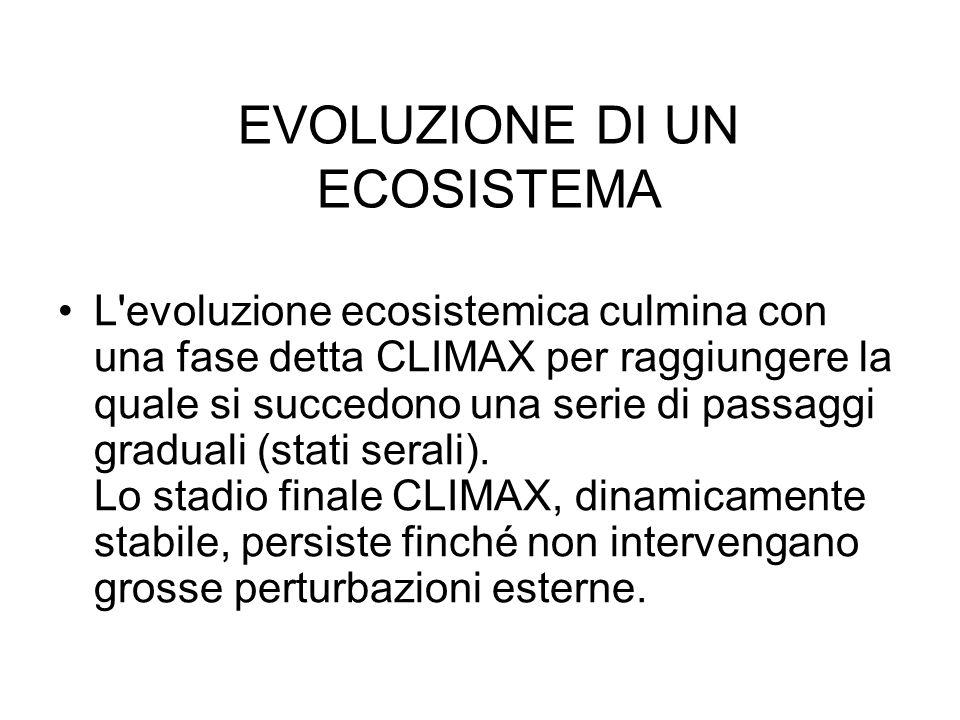 EVOLUZIONE DI UN ECOSISTEMA L'evoluzione ecosistemica culmina con una fase detta CLIMAX per raggiungere la quale si succedono una serie di passaggi gr