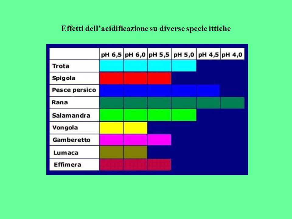 i corpi idrici sono soggetti ai fenomeni di acidificazione, soprattutto nelle aree dove sono presenti suoli che non sono in grado di tamponare lazione