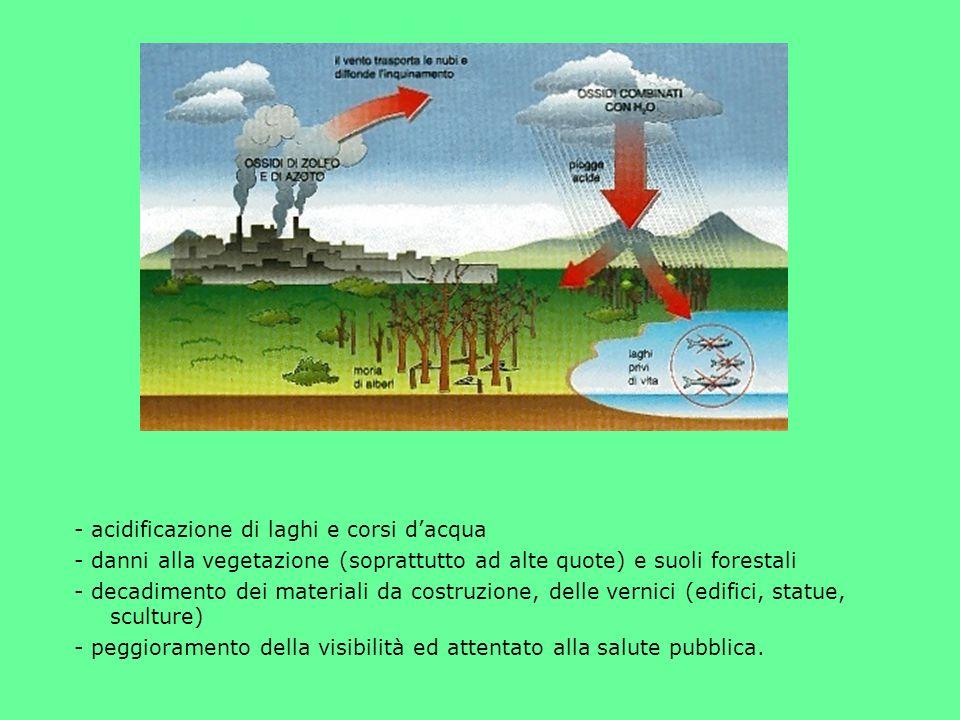 piogge acide processo di ricaduta dallatmosfera di particelle, gas e precipitazioni acide deposizione umida deposizione secca piogge, neve, nebbie, ru