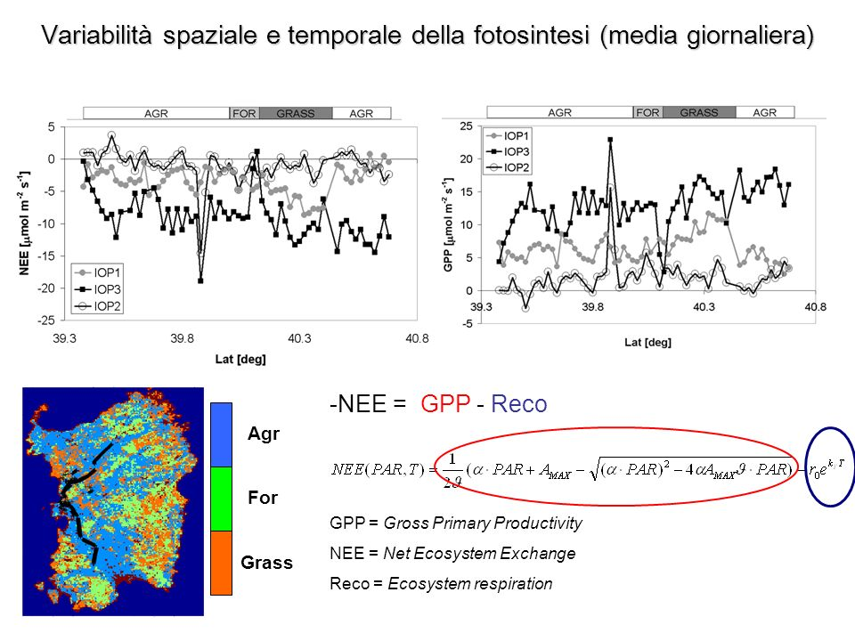 Variabilità spaziale e temporale della fotosintesi (media giornaliera) -NEE = GPP - Reco GPP = Gross Primary Productivity NEE = Net Ecosystem Exchange