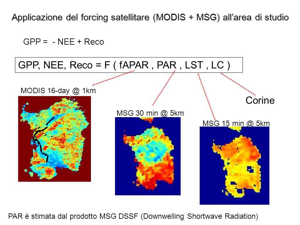 Applicazione del forcing satellitare (MODIS + MSG) allarea di studio GPP, NEE, Reco = F ( fAPAR, PAR, LST, LC ) MODIS 16-day @ 1km MSG 30 min @ 5km MS