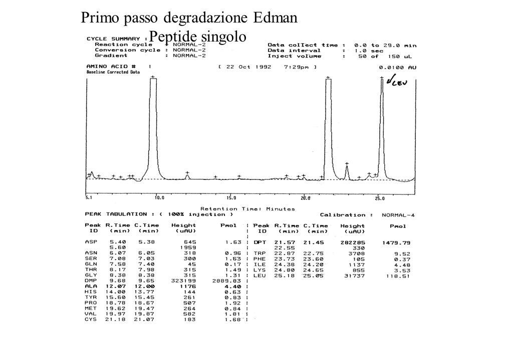 Primo passo degradazione Edman Peptide singolo