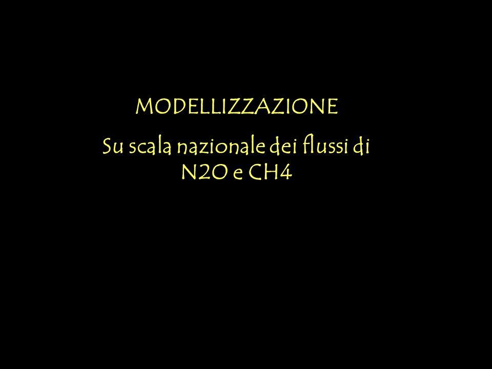 MODELLIZZAZIONE Su scala nazionale dei flussi di N2O e CH4