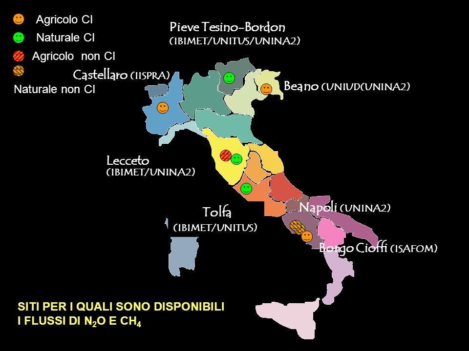 Lecceto (IBIMET/UNINA2) Pieve Tesino-Bordon (IBIMET/UNITUS/UNINA2) Tolfa (IBIMET/UNITUS) Beano (UNIUD(UNINA2) Napoli (UNINA2) Castellaro (IISPRA) Borgo Cioffi (ISAFOM) SITI PER I QUALI SONO DISPONIBILI I FLUSSI DI N 2 O E CH 4 Agricolo CI Agricolo non CI Naturale CI Naturale non CI