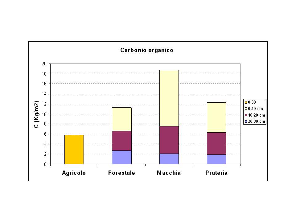 Esperimento carote di suolo C4