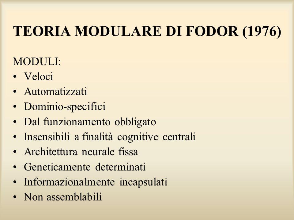 TEORIA MODULARE DI FODOR (1976) MODULI: Veloci Automatizzati Dominio-specifici Dal funzionamento obbligato Insensibili a finalità cognitive centrali A