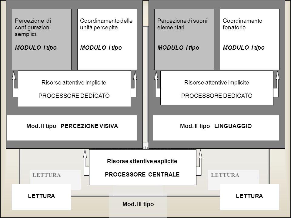 Percezione di configurazioni Semplici. MODULO I tipo Percezione di suoni elementari MODULO I tipo Coordinamento delle unità percepite MODULO I tipo Co
