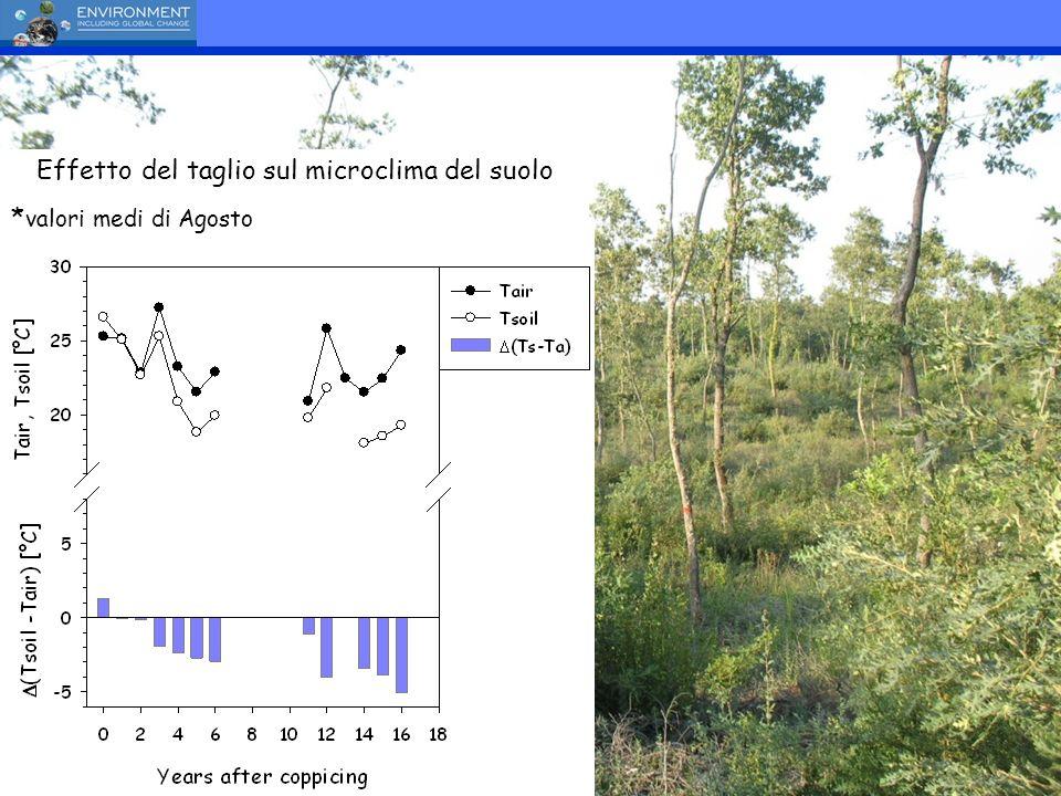 Effetto del taglio sul microclima del suolo * valori medi di Agosto