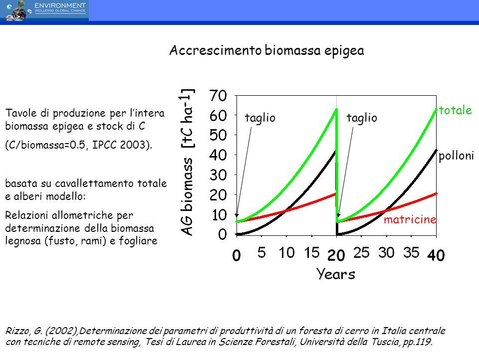 Rizzo, G. (2002),Determinazione dei parametri di produttività di un foresta di cerro in Italia centrale con tecniche di remote sensing, Tesi di Laurea