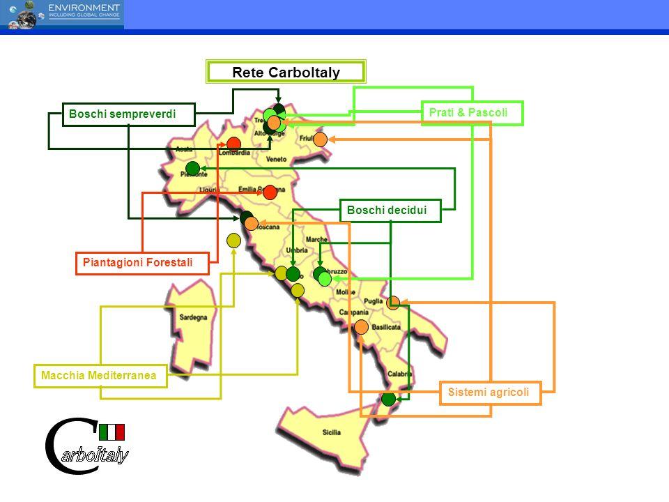 Boschi decidui Sistemi agricoli Boschi sempreverdi Piantagioni Forestali Macchia Mediterranea Prati & Pascoli Rete CarboItaly
