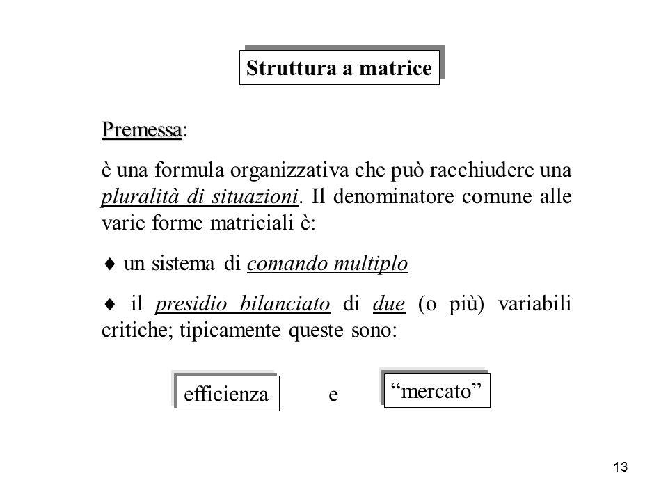 13 Struttura a matrice Premessa Premessa: è una formula organizzativa che può racchiudere una pluralità di situazioni. Il denominatore comune alle var