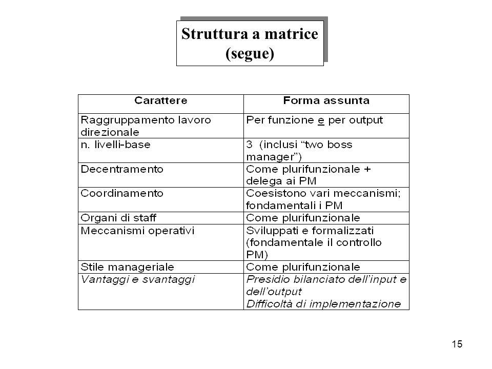 15 Struttura a matrice (segue) Struttura a matrice (segue)
