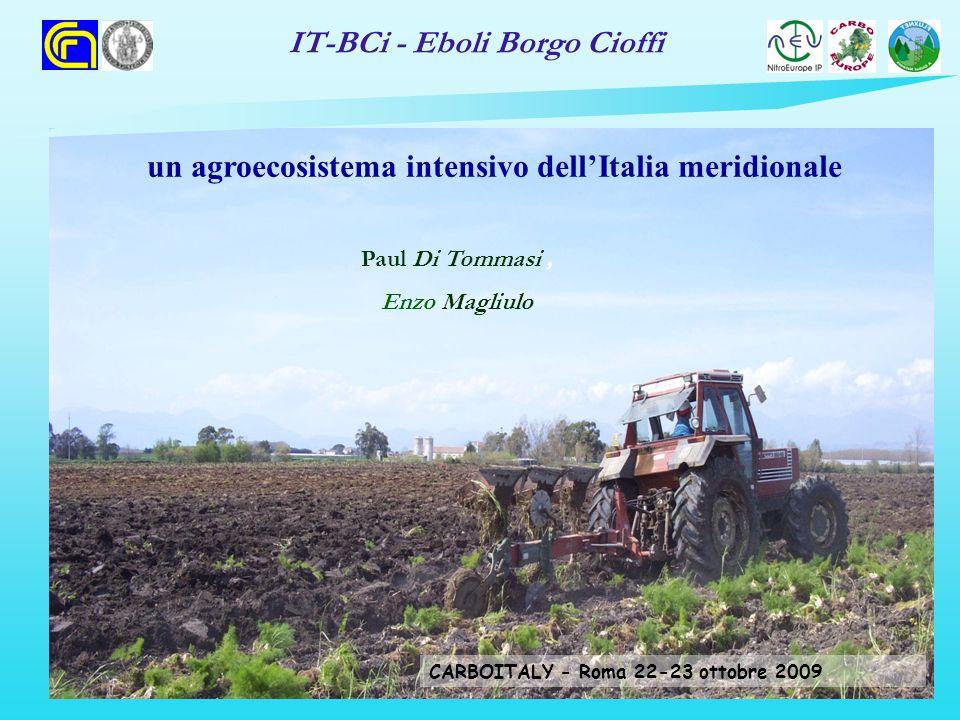 IT-BCi - Eboli Borgo Cioffi un agroecosistema intensivo dellItalia meridionale Paul Di Tommasi, Enzo Magliulo CARBOITALY - Roma 22-23 ottobre 2009