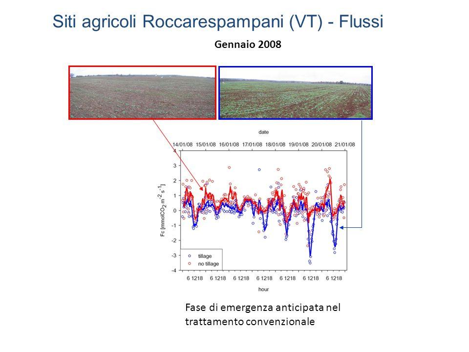 Fase di emergenza anticipata nel trattamento convenzionale Gennaio 2008 Siti agricoli Roccarespampani (VT) - Flussi
