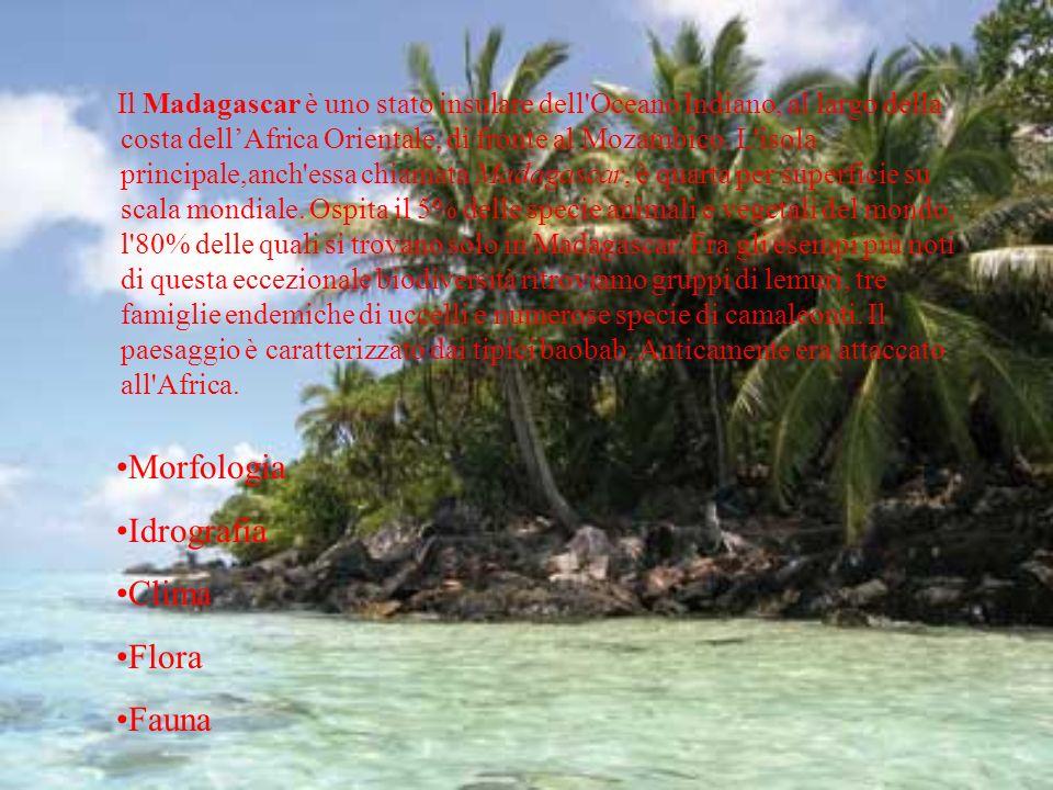 Il Madagascar è uno stato insulare dell'Oceano Indiano, al largo della costa dellAfrica Orientale, di fronte al Mozambico. L'isola principale,anch'ess